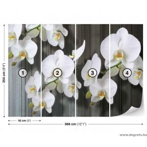 Fotótapéta Orchidea fehér 2 XL