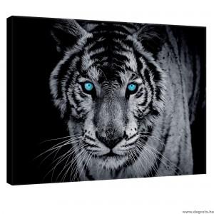 Vászonkép Tigris 1 3D