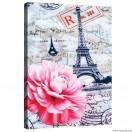 Vászonkép Párizs  -  pünkösdi rózsa
