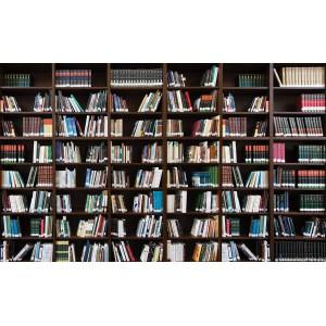 Fotótapéta Könyvtár  3 3D L
