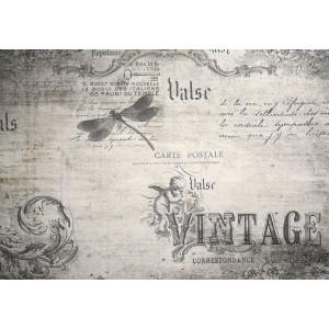 Fotótapéta Vintázs  levél