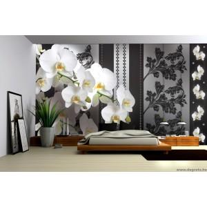 Fotótapéta Orchidea elegáns 1 3D XL