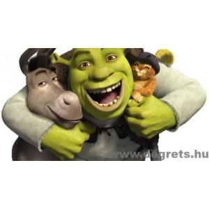 Fotótapéta Shrek