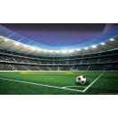 Fotótapéta Stadion  L