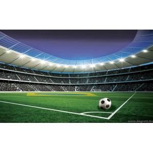 Fotótapéta Stadion  XL