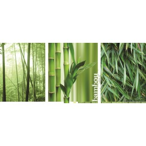 Fotótapéta Bambusz erdő Vlies