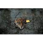 Fotótapéta Leopárd 3 3D