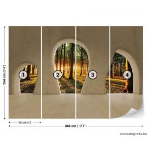 Fotótapéta Kilátás az erdőből