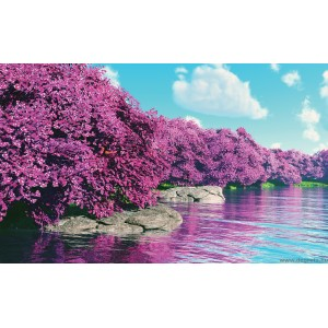 Fotótapéta lila Varázslat