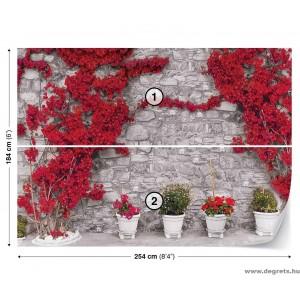 Fotótapéta Fal piros virágokkal 2 L