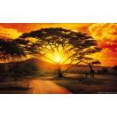 Fotótapéta Napnyugta Afrikában