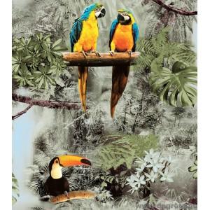 Tapéta duplex Papagájok 3D