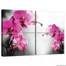 Vászonkép szett 4  darabos Orchidea Ciklámen 1
