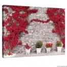 Vászonkép Fal  piros virágokkal  1 L