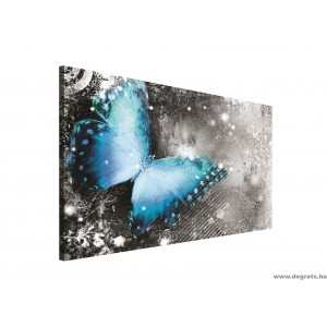 Vászonkép Pillangó vintázs