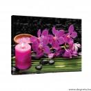Vászonkép Orchidea 4 L
