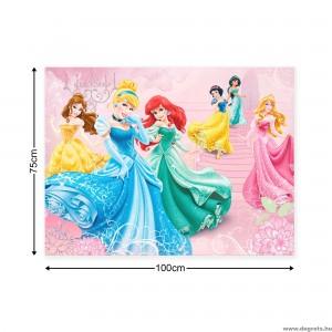 Vászonkép Disney Hercegnők 1