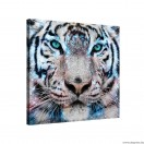Vászonkép Tigris 3 3D