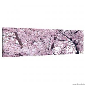 Vászonkép Tavaszi virágzás 2 XL