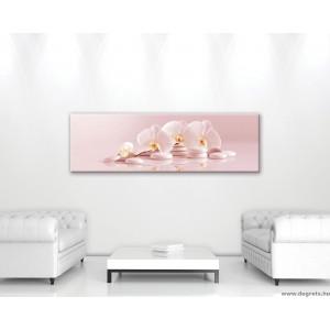 Vászonkép Orchidea 6