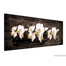 Vászonkép Orchidea 7