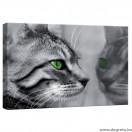 Vászonkép Cicák 1