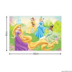 Vászonkép Disney Hercegnők 3