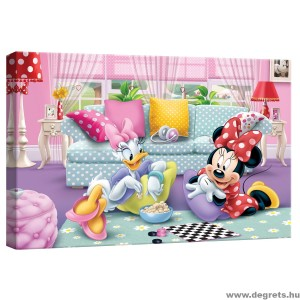 Vászonkép Mini és Daisy 2