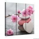 Vászonkép szett 3 darabos Tavaszi virágzás 1