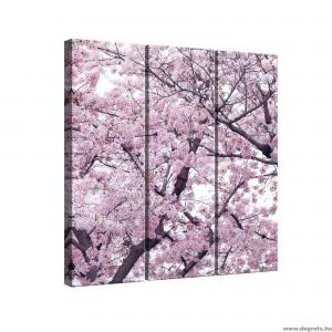 Vászonkép szett 3 darabos Tavaszi virágzás