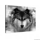 Vászonkép szett 3 darabos Farkas