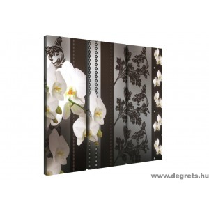 Vászonkép szett 3 darabos Orchidea elegáns 1