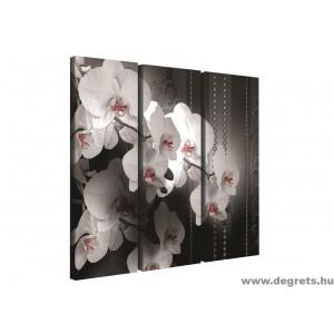 Vászonkép szett 3 darabos Orchidea elegáns 4