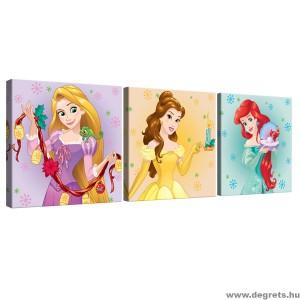 Vászonkép szett 3 darabos Disney Hercegnők 5