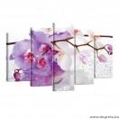 Vászonkép szett 5 darabos Orchidea cseppek