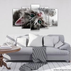 Vászonkép szett 5 darabos Cicák 2