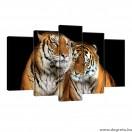 Vászonkép szett 5 darabos Tigrisek