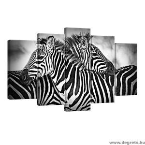 Vászonkép szett 5 darabos Zebras fekete és fehér