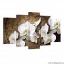 Vászonkép szett 5 darabos Orchidea fehér