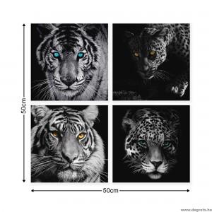 Vászonkép szett 4 darabos Ragadozók