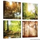 Vászonkép szett 4 darabos erdő tájkép s 1
