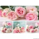 Vászonkép szett 4 darabos rózsaszín rózsák 2