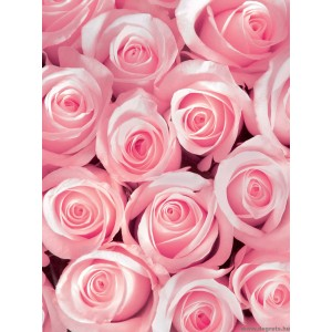 Fotótapéta rózsaszín rózsák 3D