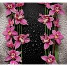 Fotótapéta lila orchideák