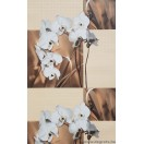 Tapéta PVC Orchidea bézs