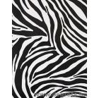 Fólia Zebra
