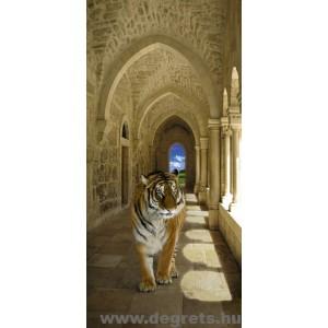 Fotótapéta Tigris